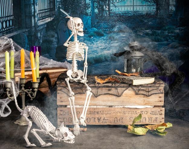 Halloweenowa dekoracja ze szkieletami i czarnym pająkiem