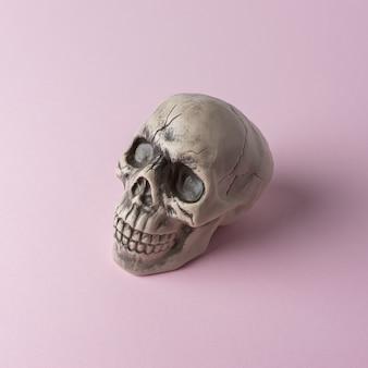 Halloweenowa głowa czaszki na różowym tle