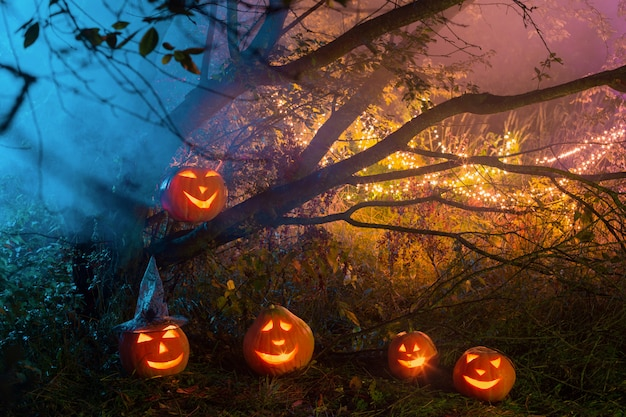 Halloweenowe banie w nocnym lesie