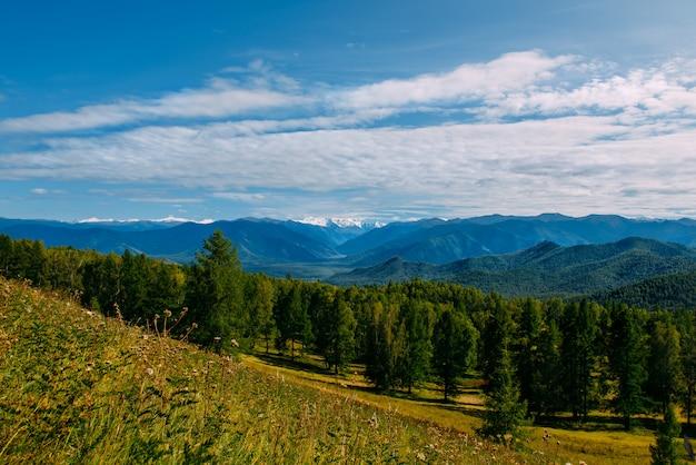Halna dolina z drzewami i chmurnym niebem, złoty jesieni panoramy krajobraz, altai republika