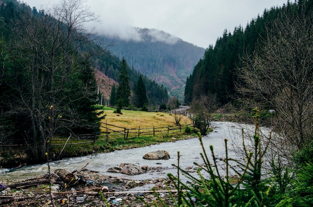 Halna rzeka z trawą dryluje drzewa siwieje chmury z śmieci