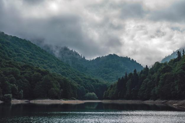 Halne jezioro z lasem we mgle