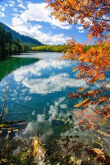 Halny jesieni zieleni syberia jezioro z odbiciem i czerwoną rowan