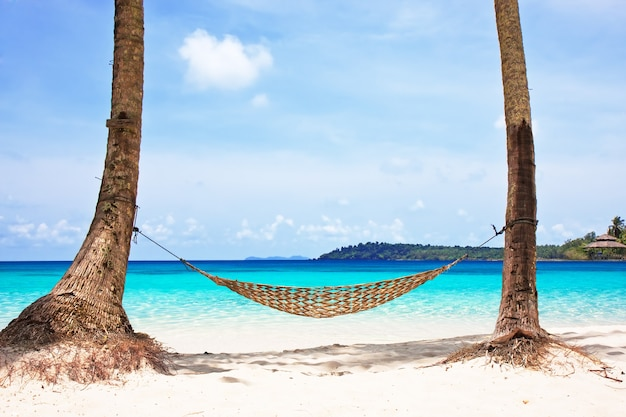 Hamak między palmami na pięknej tropikalnej plaży