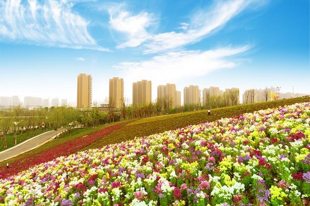 Hangzhou, zhejiang, chiny, wypoczynek i wieżowce opinii publicznej.