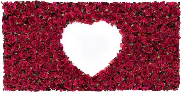 Happy valentines day biały kształt serca w tle pięknej czerwonej róży.