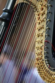 Harfa z bliska
