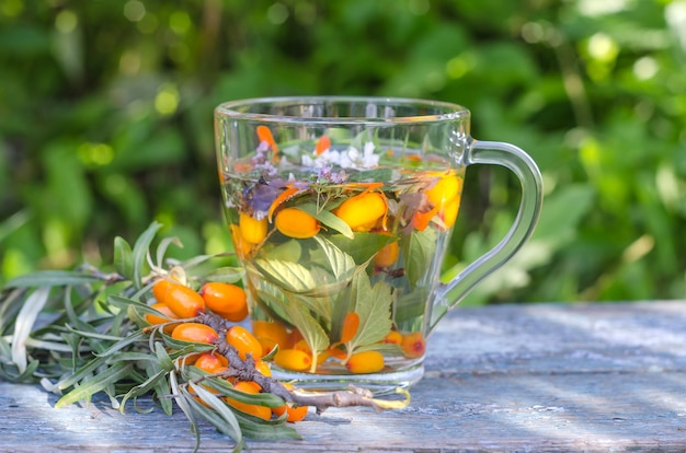Herbata ziołowa z melisą i rokitnikiem na słońcu. zdrowy tryb życia