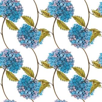 Hidrungea akwarela. bez szwu wzorów. dziki kwiat ustawia odosobnionego na bielu. botaniczna akwarela ilustracja, bukiet hidrungea, rustykalne kwiaty.