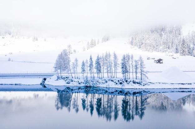 Hipnotyzujące ujęcie jeziora z pokrytymi śniegiem drzewami odbijającymi się w czystej, błękitnej wodzie