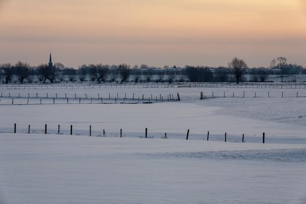 Hipnotyzujący zimowy krajobraz pokryty puszystym śniegiem w holandii