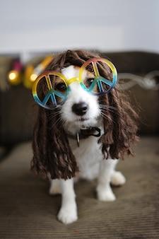 Hippy dog costume. śmieszny jack russell gotowy na partner karnawału lub halloween.