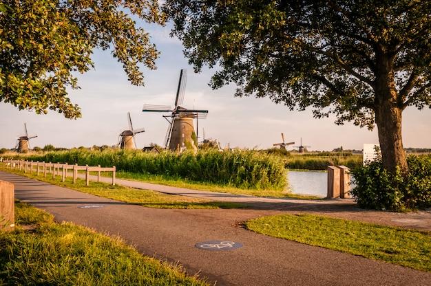 Holenderskie wiatraki przy drodze