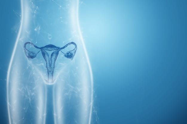 Hologram kobiecego narządu macicy sylwetka kobiecego ciała