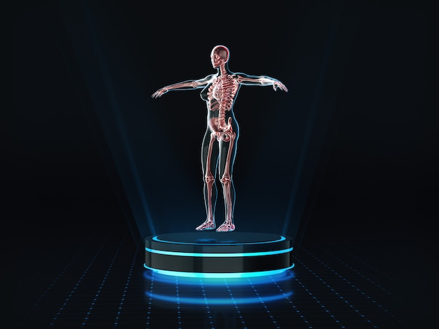 Hologram kobiecej anatomii i szkieletu na cokole