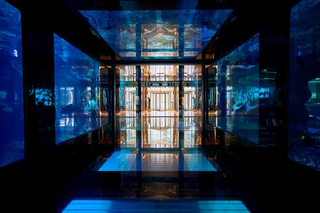 Hotelowe akwarium podwodne
