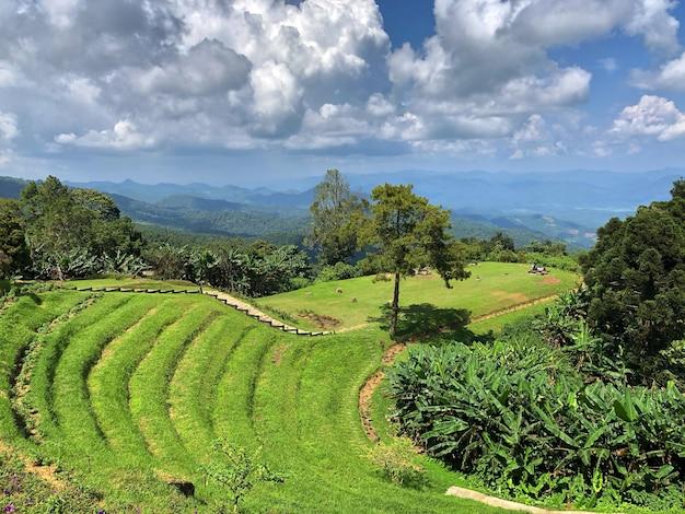 Huai nam dang park narodowy, chiang mai, tajlandia