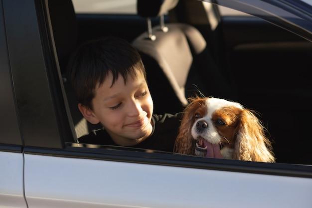 Humoralne zdjęcie chłopca nastolatka uśmiechającego się patrzącego przez okno samochodu ze swoim psem cavalier king charles spaniel, zamierzający wyruszyć w podróż