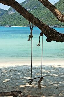 Huśtawka zwisająca z drzewa na plaży na wyspie w ciągu dnia