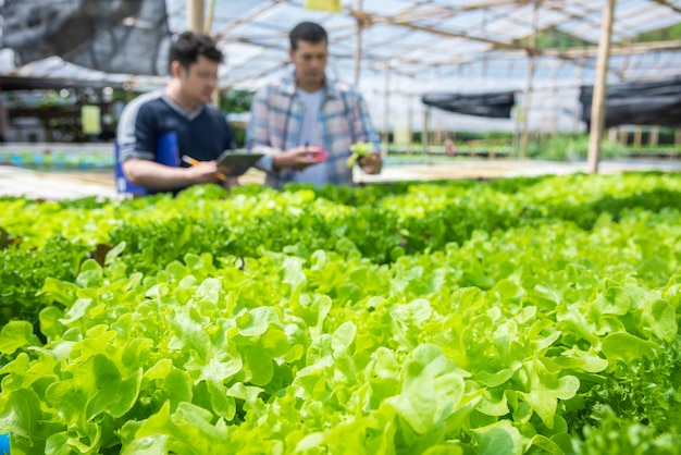 Hydroponiczny właściciel gospodarstwa rolnego sprawdza ph wody i temperatury środowiska rolniczego uprawy koncepcja.