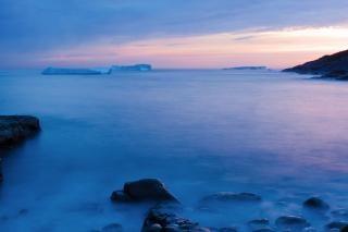Icebergs zimne
