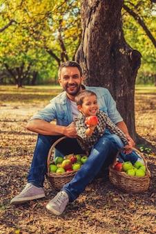 Ich bogate zbiory. szczęśliwy mały chłopiec wyciągający jabłko i patrzący w kamerę, podczas gdy jego ojciec siedzi obok niego na ziemi