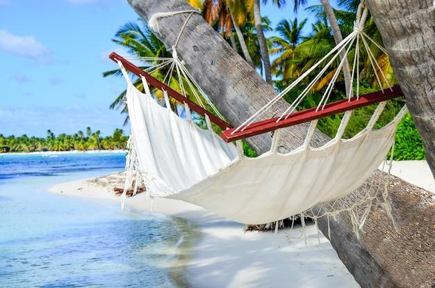 Idylliczna plaża z palmami kokosowymi i hamakiem na dominikanie
