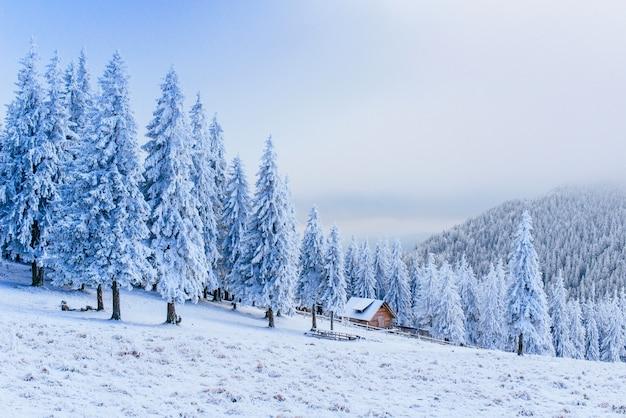 Idylliczny domek w zimie
