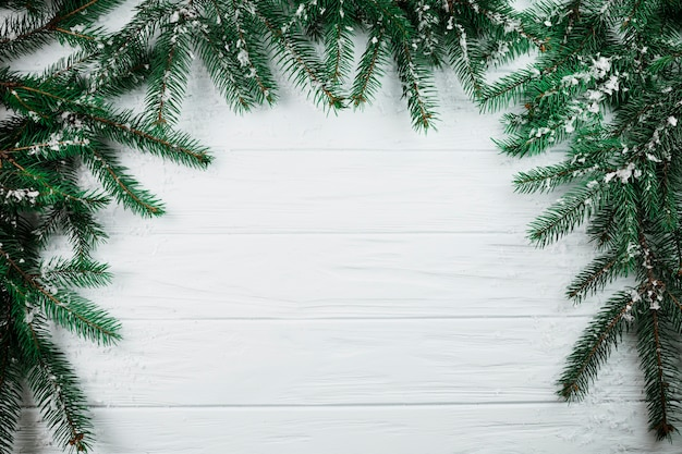 Iglaste gałęzie ze śniegiem