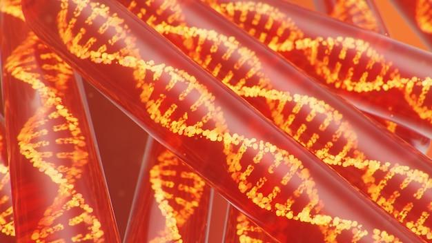 Ilustracja 3d cząsteczka dna, jej struktura. pojęcie ludzkiego genomu