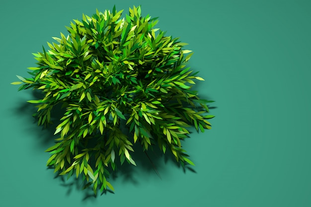 Ilustracja 3d duże zielone drzewo liściaste z cieniem