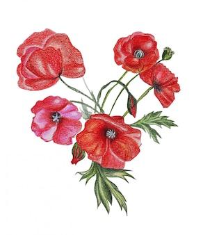 Ilustracja ołówkowego rysunku bukieta kwiaty w jaskrawych kolorach