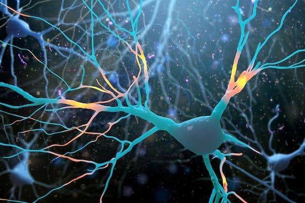 Ilustracja struktury neuronów mózgu