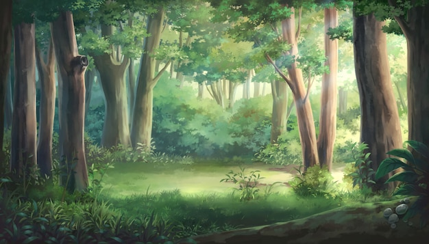 Ilustracja światła i lasu