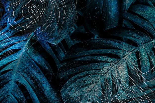 Ilustracja tła ciemnoniebieskiego liścia monstera