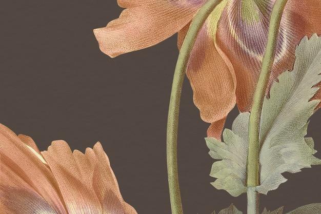 Ilustracja tła kwiatu maku w stylu vintage, zremiksowana z dzieł należących do domeny publicznej public