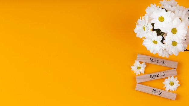 Imiona miesięcy wiosennych na drewnianych kawałkach z białymi kwiatami i miejscem na kopię