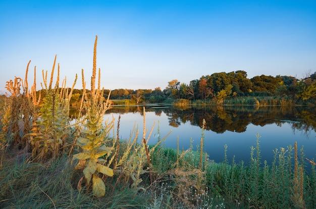Imponująca sceneria dużego, cichego letniego jeziora ze spokojną, chłodną wodą