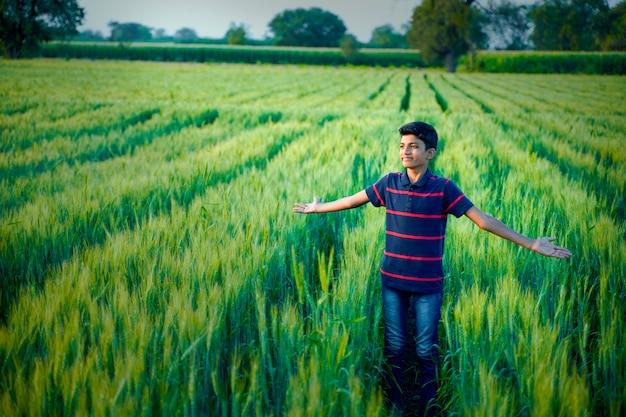 Indiańska śliczna chłopiec rozprzestrzenia jego ręki przy polem