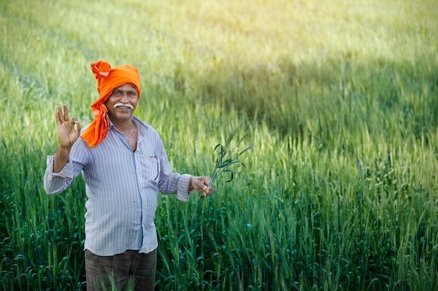 Indiański rolnik przy złotym pszenicznym polem