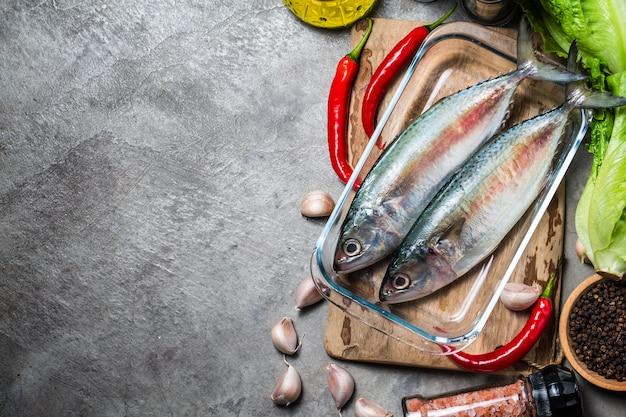 Indyjski makrela rastrelliger kanagurta