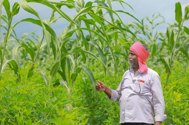 Indyjski rolnik stojący w swoim polu