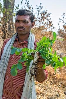 Indyjski rolnik, trzymając w rękach rzodkiewka w gospodarstwie ekologicznym