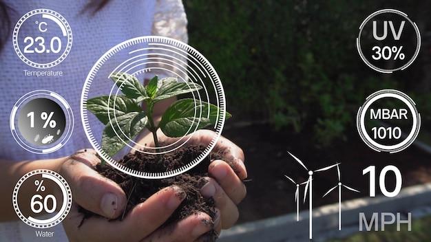 Inteligentna technologia rolnictwa cyfrowego dzięki futurystycznemu gromadzeniu danych z czujników
