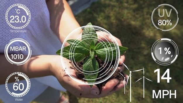 Inteligentna technologia rolnictwa cyfrowego dzięki futurystycznemu zarządzaniu gromadzeniem danych z czujników przez sztuczną inteligencję w celu kontrolowania jakości wzrostu i zbiorów upraw. wspomagana komputerowo koncepcja uprawy plantacji.
