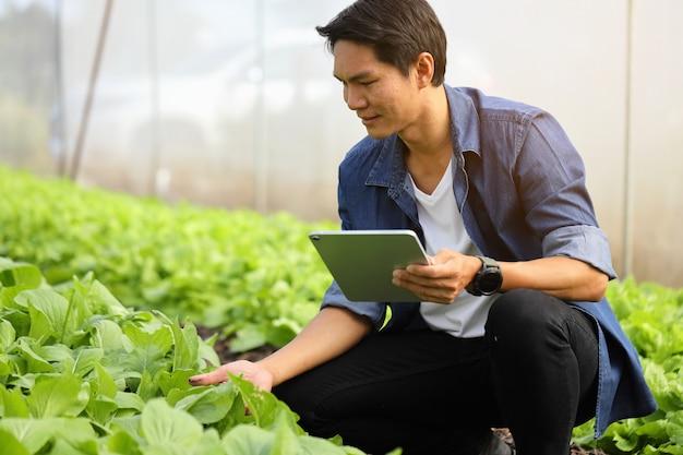 Inteligentni rolnicy monitorują wzrost roślin, aby nadążyć za potrzebami klientów.