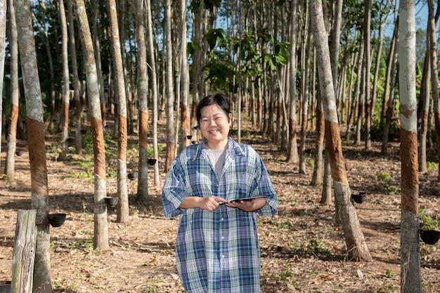 Inteligentny rolnik rolnik plantacja drzew kauczukowych