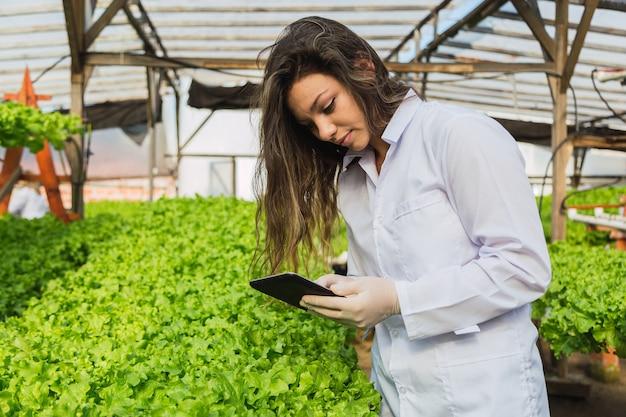 Inżynier kobieta trzyma tabletkę i troszczy się o rośliny sałaty - młoda kobieta pracuje w gospodarstwie hydroponicznym.