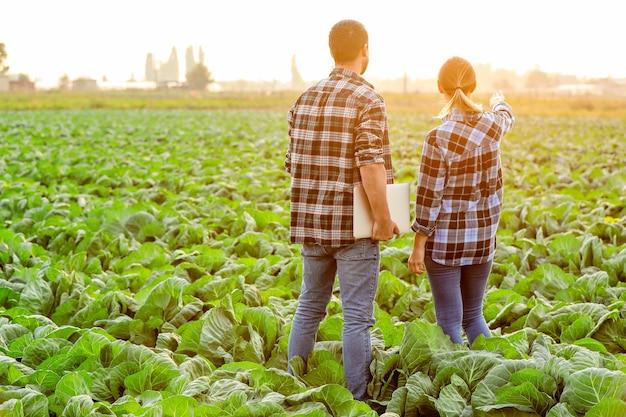 Inżynierowie rolnictwa pracujący w terenie