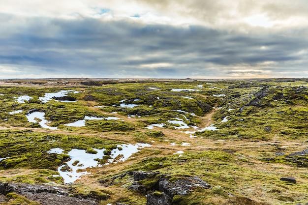Islandia krajobraz: skały, mech i śnieg